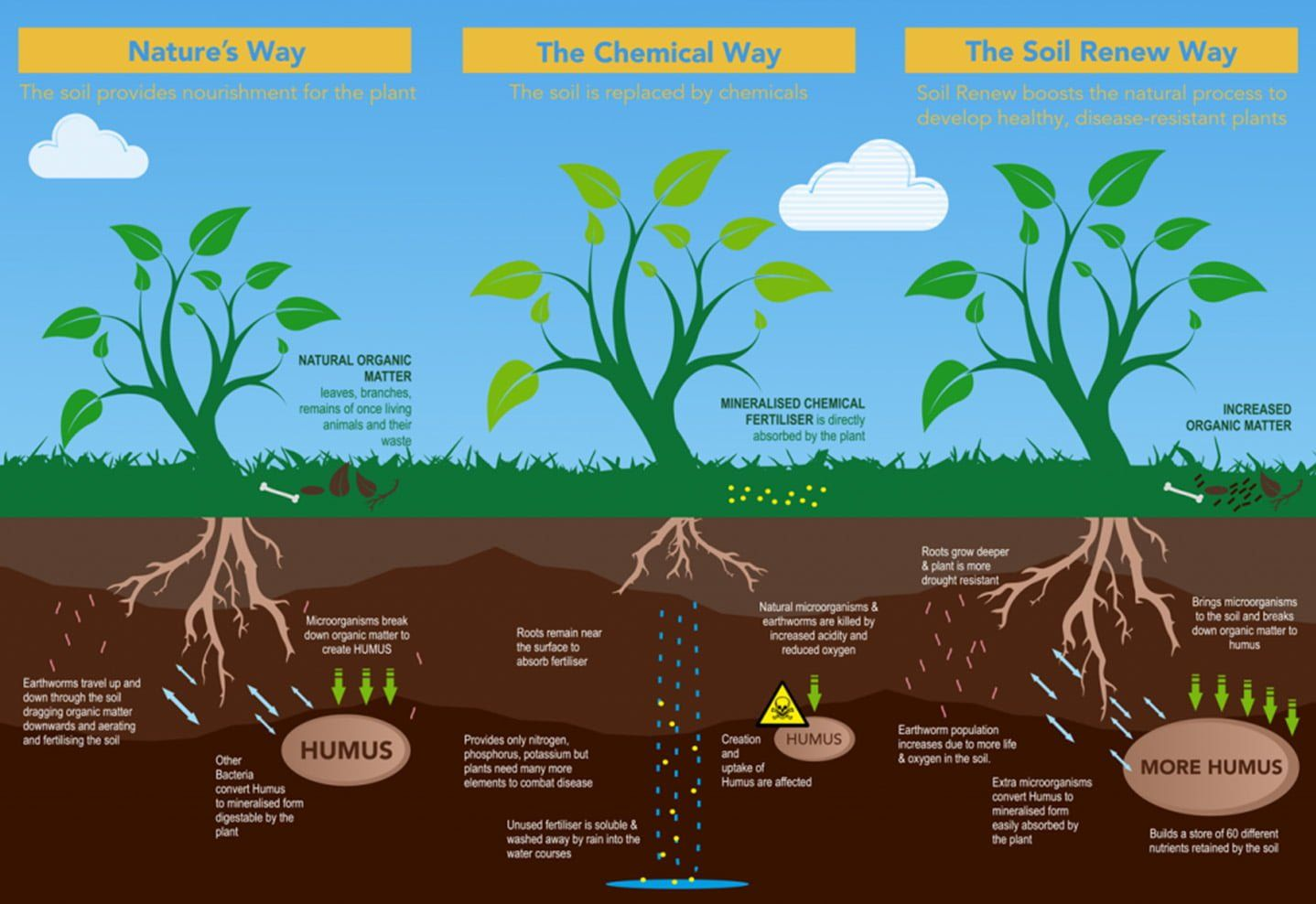 How Soil Renew Works - Info