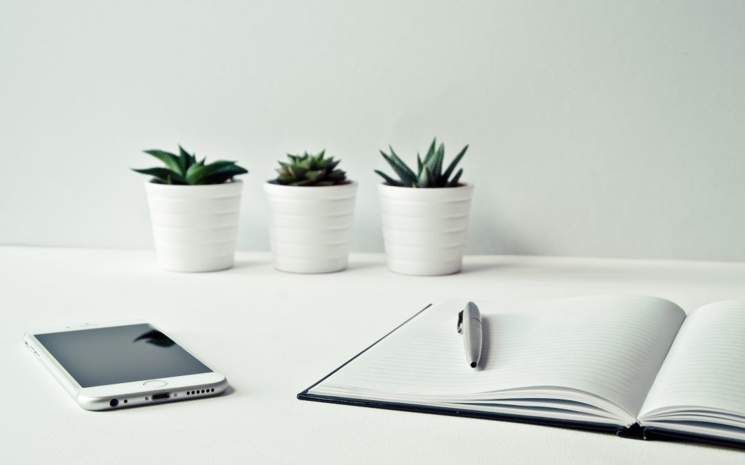 DesignRush Announces The Top 26 Branding Agencies From Around World